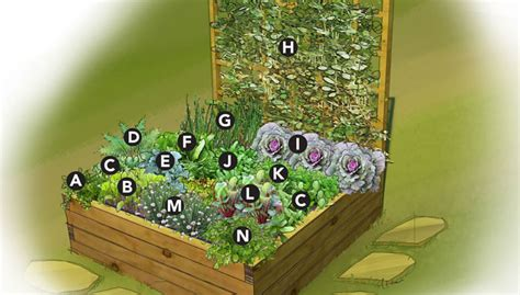 Small Space Raised Vegetable Bed Planning A Raised Bed Vegetable Garden