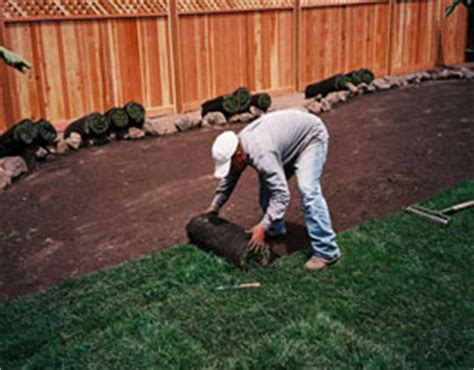 Backyard Cleaning Services by Yard Lawn Cleanup Services In The San Francisco Bay Area