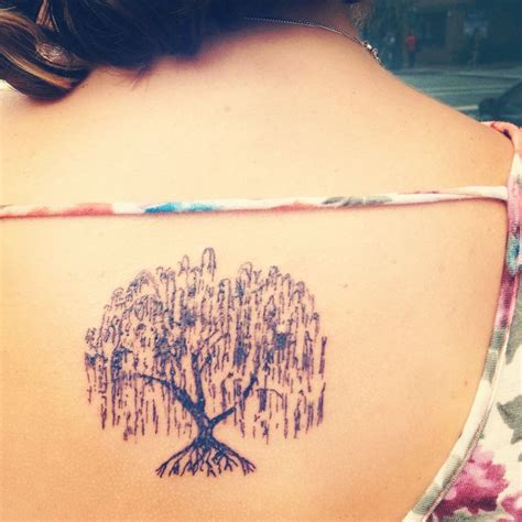 weeping willow tattoo 25 best ideas about weeping willow on