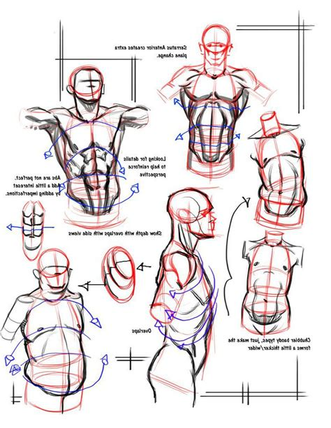 Drawing Human Anatomy by 50 Grey Folder Of Drawing Tips And Tricks Character