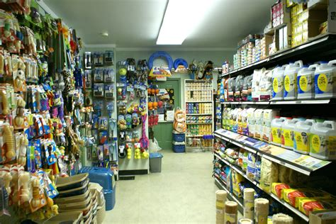 puppy store nyc pet supply store ny services image interior 05042017 animal league