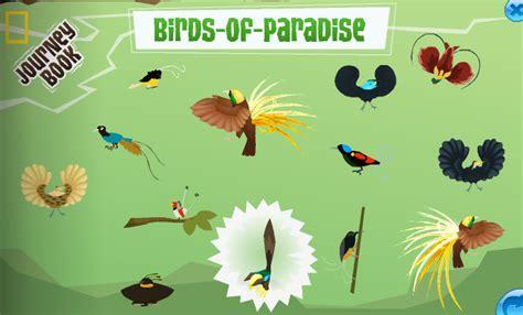Mainan Play Sand Animal Paradise totes rock animal jam cheats paradise for those