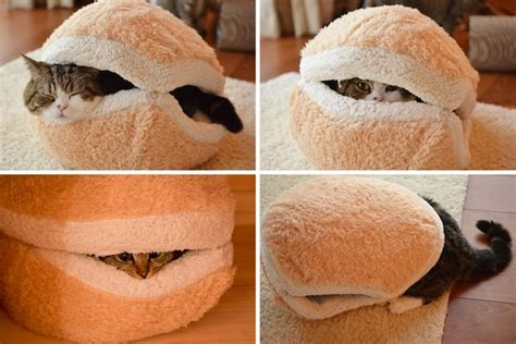 cat macaron bed cozy japanese cat macaron bed diy pinterest