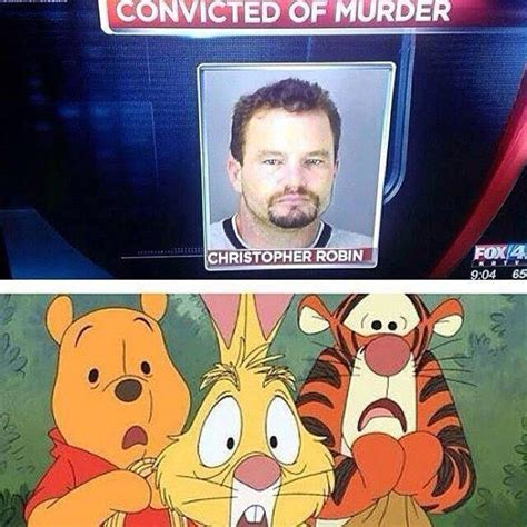Christopher Robin Meme - funny pictures june 17 2015