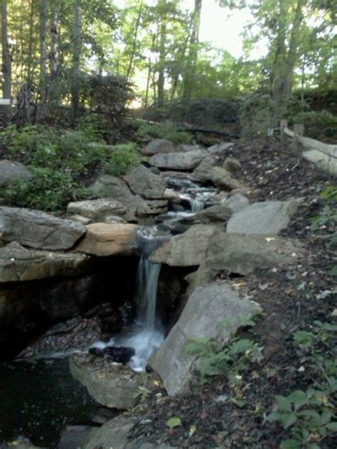 Bog Garden Greensboro by 1000 Images About Carolina On