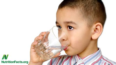 water for children does a drink of water make children smarter