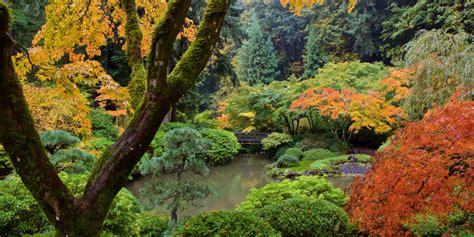 Strolling Pond Garden Portland Japanese Garden