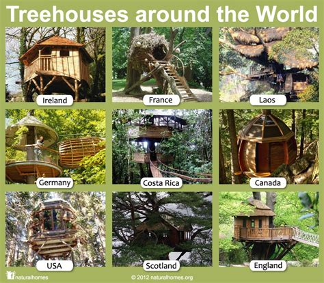 tree houses around the world treehouses around the world