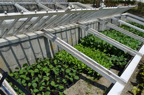 Cold Frame Gardening by Extend The Growing Season With Cold Frame Gardening