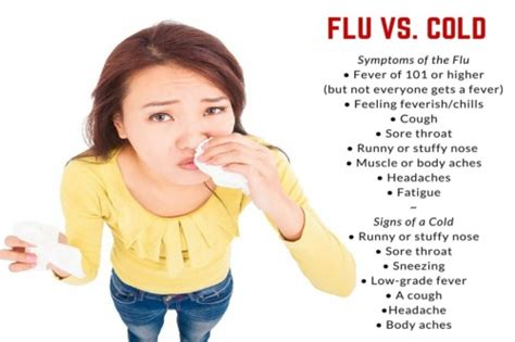flu symptoms flu vs a cold how to the difference