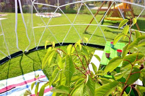 garten iglu das garden igloo verlosung interior baby und meer