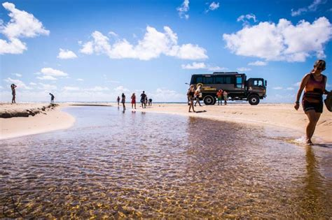 best fraser island tour fraser island tours day trips accommodation cing