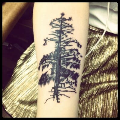 tattoo shops great falls mt 17 best ideas about tree tat on pine tree