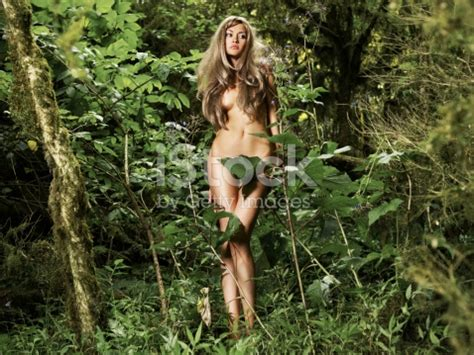 the naturalist on the river amazons classic reprint books beautiful in the rainforest stock photo istock