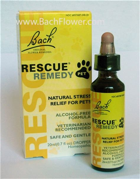 rescue remedy dogs rescue remedy pet stress relief for animals free