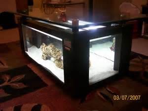 Coffee Table Aquarium Saltwater Aquarium Stingray Viewing Gallery