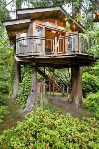 429 best images about cool tree houses on