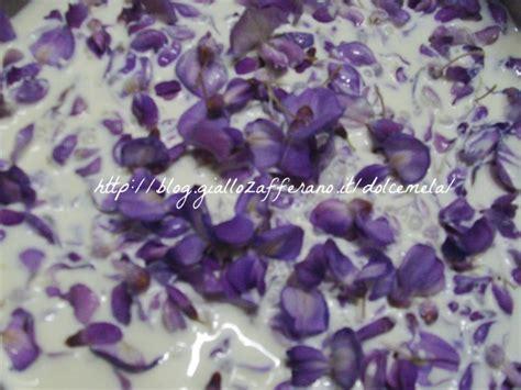 glicine senza fiori gelato ai fiori di glicine