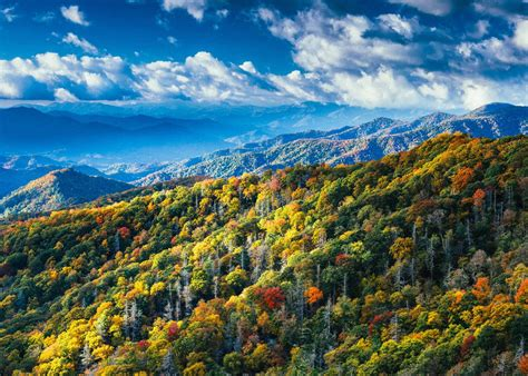 smoky mountain fall colors friday is for appalachian mountains swimming the