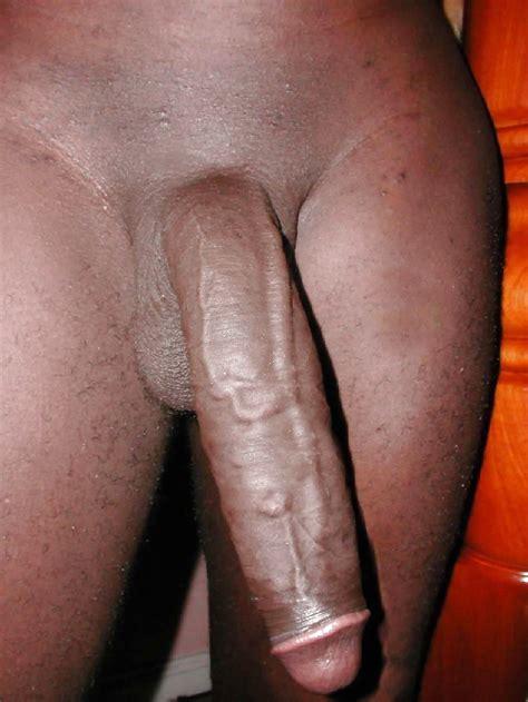 big Fat Black cock 13 Pics