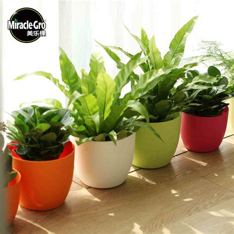 planter pots miracle gro round self watering pot plastic flower pot