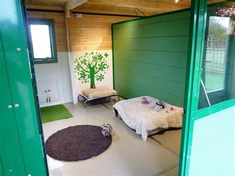 hayfields luxury dog hotel boarding kennels
