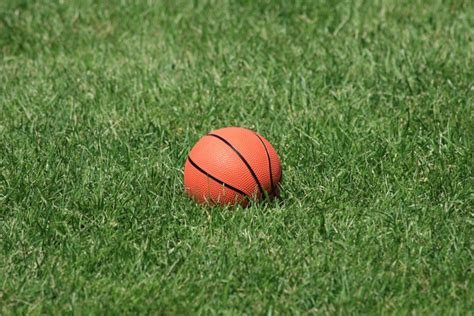 %name puzzles for kids   Online Jigsaw Puzzle   Basketball in the grass