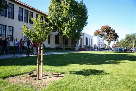 Mba Colleges In Sunnyvale by Fremont Adults School Sunnyvale In Russian