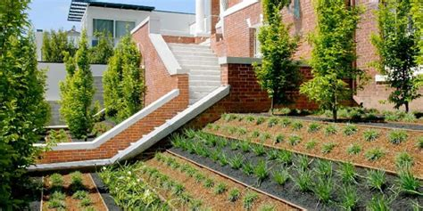 professional landscaping landscaping tips to consider for your ideal garden