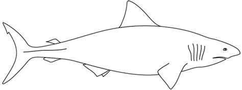 Coloriage 224 Imprimer Un Requin Turbulus Jeux Pour Enfants