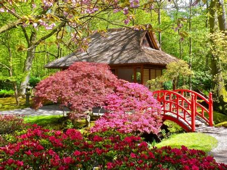 japanese garden flowers nature background wallpapers
