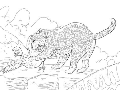 Jaguar Catches A Bird Coloring Page Supercoloring Com Jaguar Coloring Pages