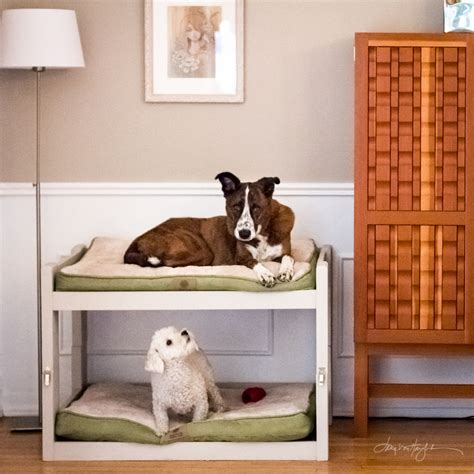 dog bunk bed dog bunk bed plans plans diy free download roubo workbench