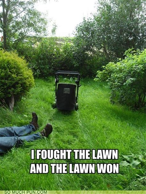 lawn mower dump a day
