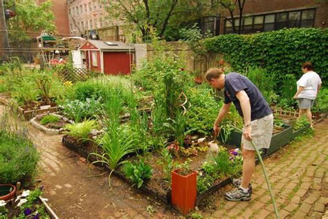 tales  gardening greatness community gardens nyc parks