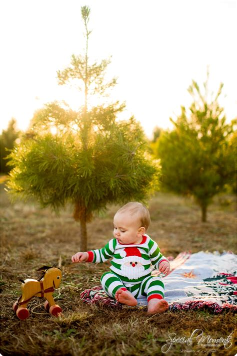 collections of arkansas christmas tree farms easy diy