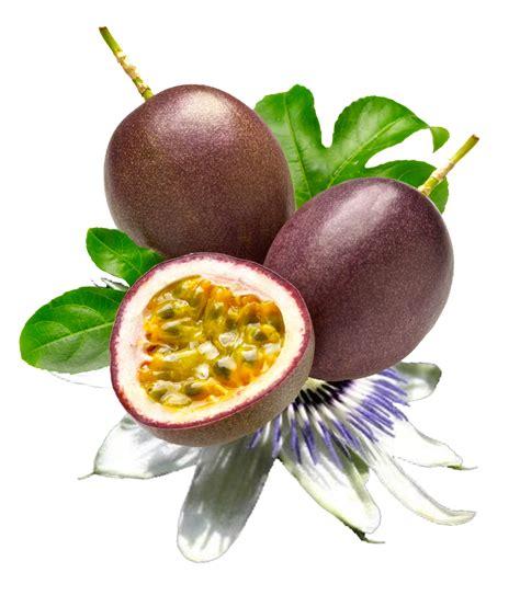 pangiruna toraya markisa passion fruit sejarah