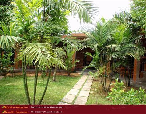 house garden design in sri lanka house design