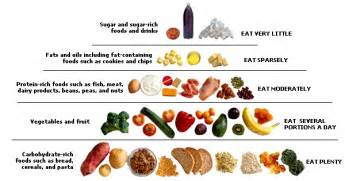 Protein carbs rich food best fruits amp vegetable sources
