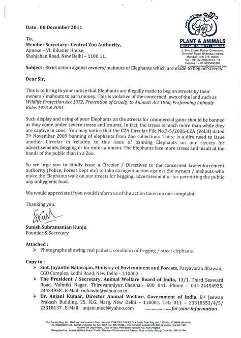 paws mumbai press kit update paws mumbai launched complaint  elephant owner mahouts