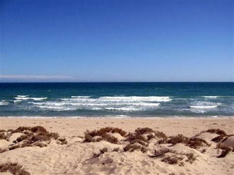 rocky point houses for sale lowest priced homes for sale in rocky point mexico