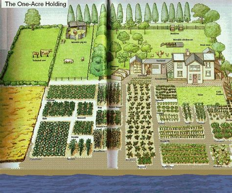 One-acre spread, how many people? | Homestead Layout ... 1 Acre Horse Farm Layout