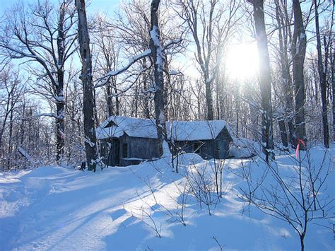 Snowy Cabin In The Woods by A Cabin In The Snowy Woods Flickr Photo
