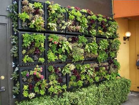 Vertical Garden Design Adding Natural Look To House Plants For Garden Walls
