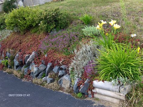 rock garden design plans cheap garden rocks rock garden design ideas room