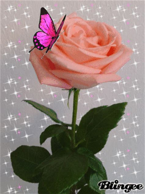 rosas goticas de amor imagui rosa amor picture 130283210 blingee com