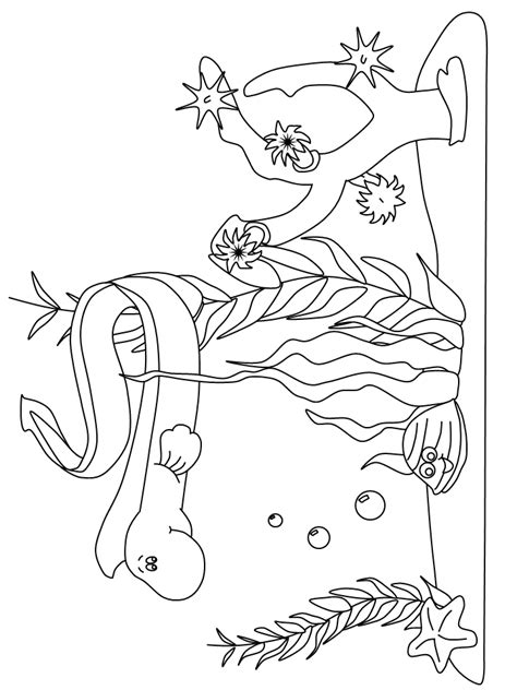 underwater coloring pages to print underwater coloring pages to print free coloring pages