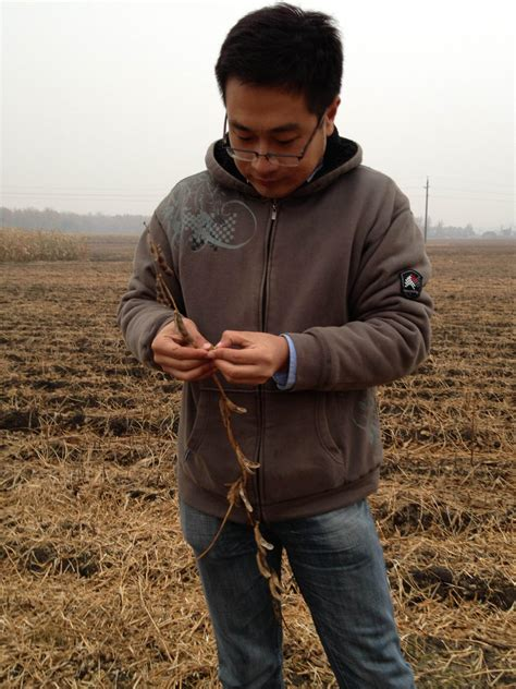 the struggle for soy and other dilemmas of a korean adoptee books harvesting clues to gmo dilemmas from china s soybean fields