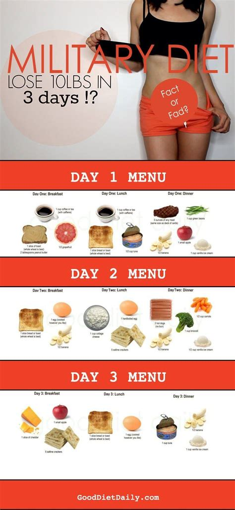 Lose 10 Pounds 3 Days Detox by 17 Best Ideas About 3day Diet On 3