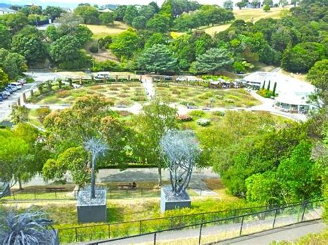 A Great View Of The Rose Garden Picture Of Wellington Wellington Botanical Gardens